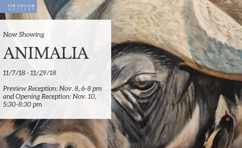 Animalia at Tim Collom Gallery in November 2018