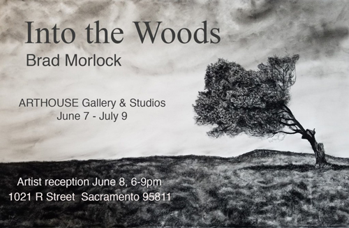Into the Woods at Arthouse on R in June 2019